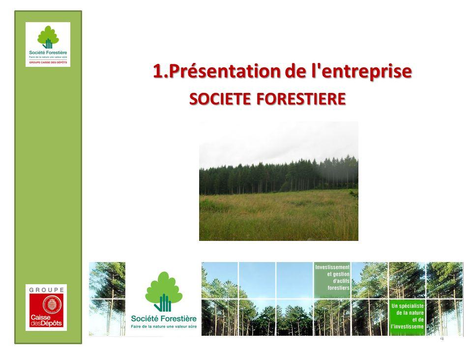 1.Présentation de l'entreprise SOCIETE FORESTIERE 4