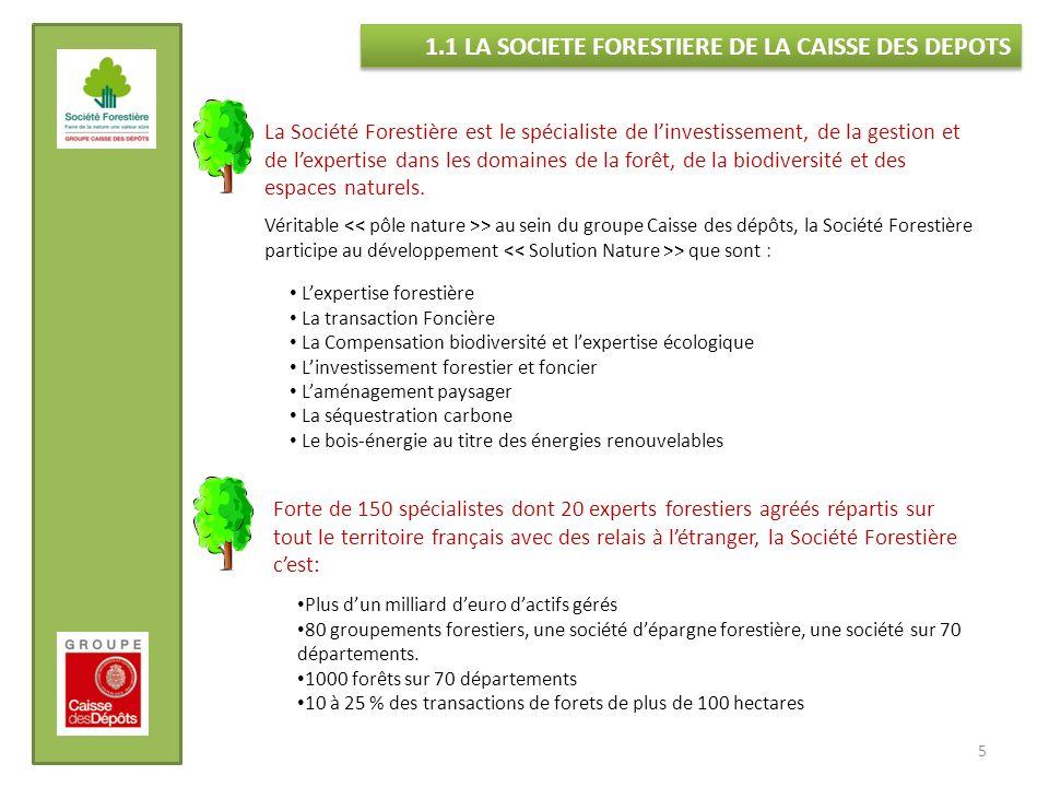 La Société Forestière est le spécialiste de linvestissement, de la gestion et de lexpertise dans les domaines de la forêt, de la biodiversité et des e