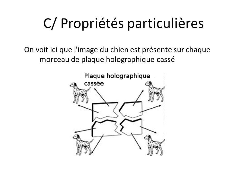 C/ Propriétés particulières On voit ici que l'image du chien est présente sur chaque morceau de plaque holographique cassé