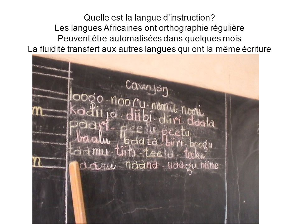 Quelle est la langue dinstruction.