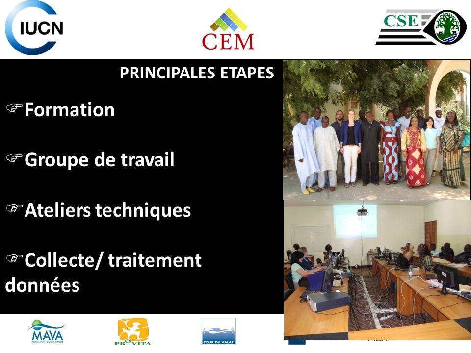 Formation Groupe de travail Ateliers techniques Collecte/ traitement données PRINCIPALES ETAPES