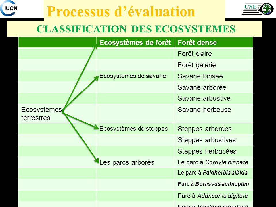 CLASSIFICATION DES ECOSYSTEMES Processus dévaluation Ecosystèmes de forêtForêt dense Forêt claire Forêt galerie Ecosystèmes de savane Savane boisée Sa