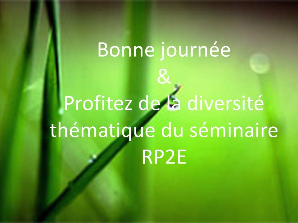 Bonne journée & Profitez de la diversité thématique du séminaire RP2E