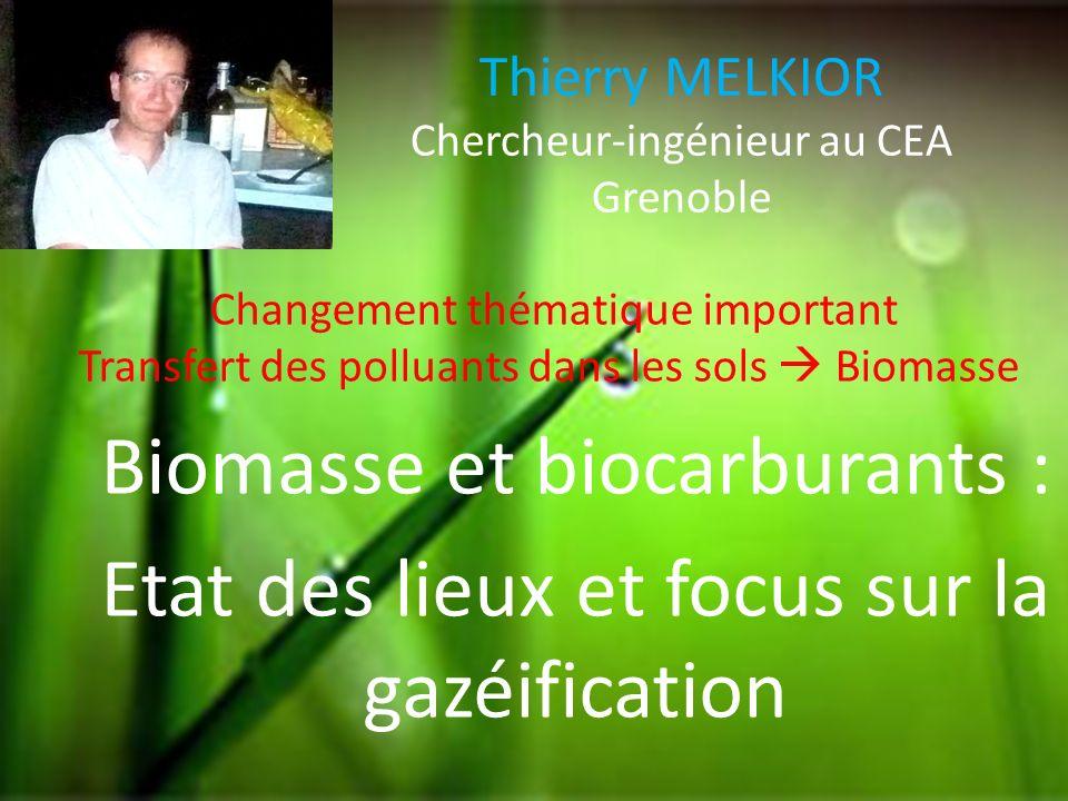 Thierry MELKIOR Chercheur-ingénieur au CEA Grenoble Biomasse et biocarburants : Etat des lieux et focus sur la gazéification Changement thématique imp