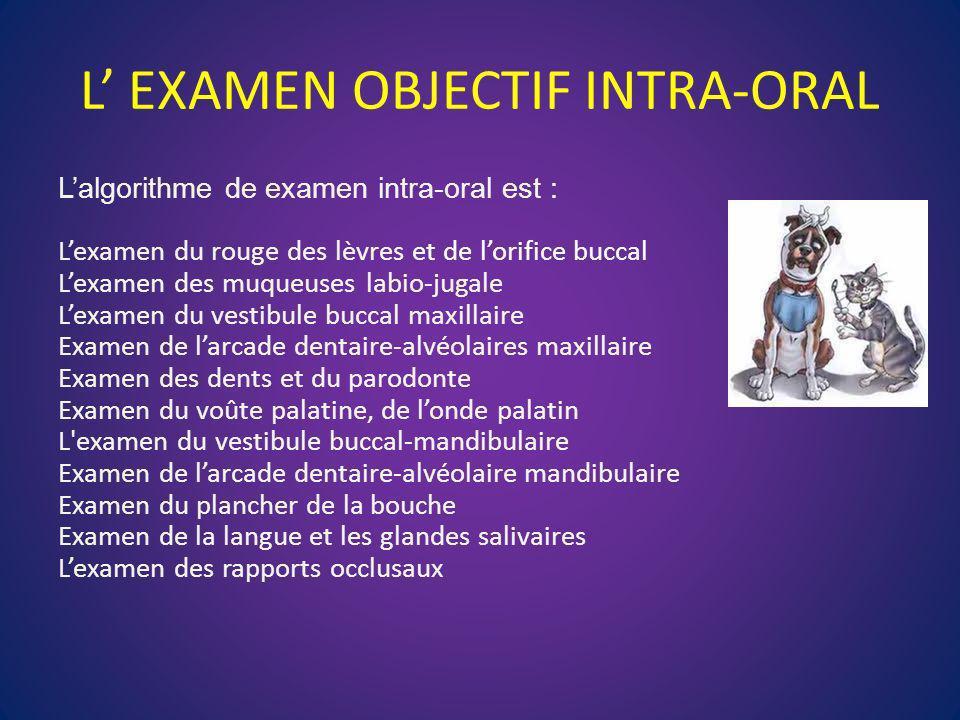 L EXAMEN OBJECTIF INTRA-ORAL Lalgorithme de examen intra-oral est : Lexamen du rouge des lèvres et de lorifice buccal Lexamen des muqueuses labio-juga