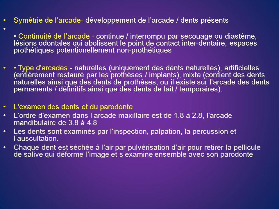 Lexamen des rapports occlusaux les paramètres de la morphologie occlusale, locclusion statique et locclusion dynamique.