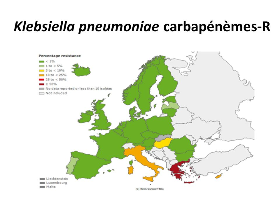 Klebsiella pneumoniae carbapénèmes-R