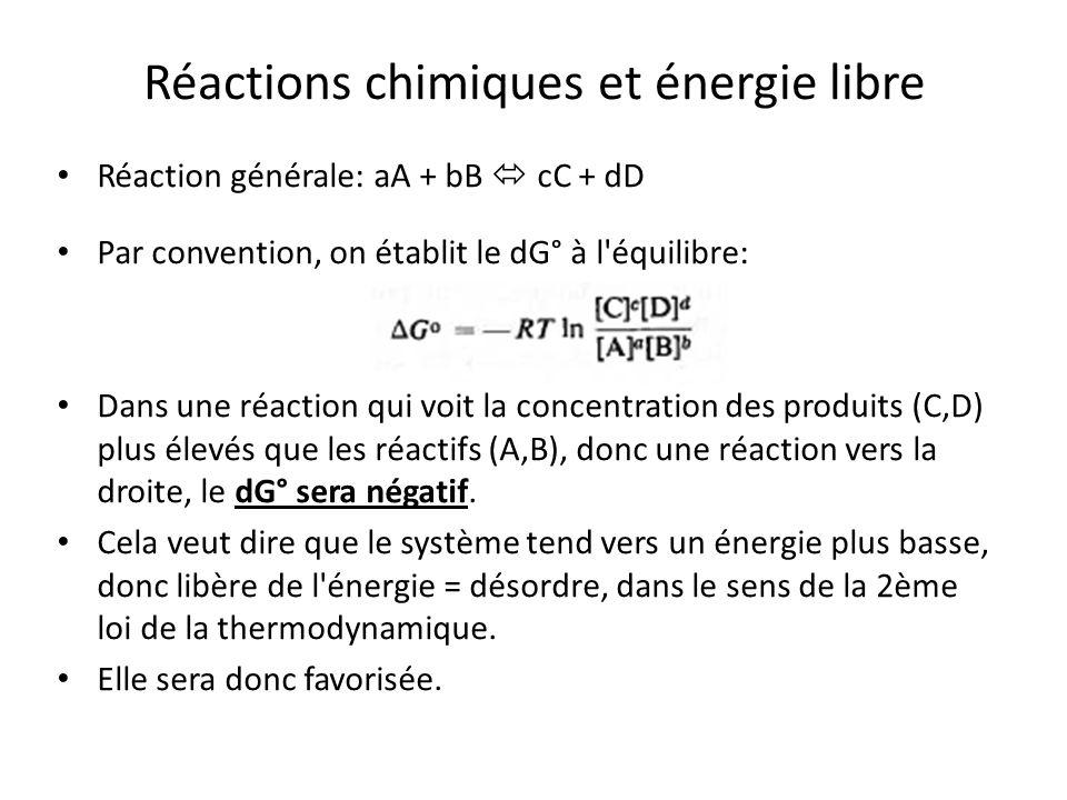 Réactions chimiques et énergie libre Réaction générale: aA + bB cC + dD Par convention, on établit le dG° à l'équilibre: Dans une réaction qui voit la