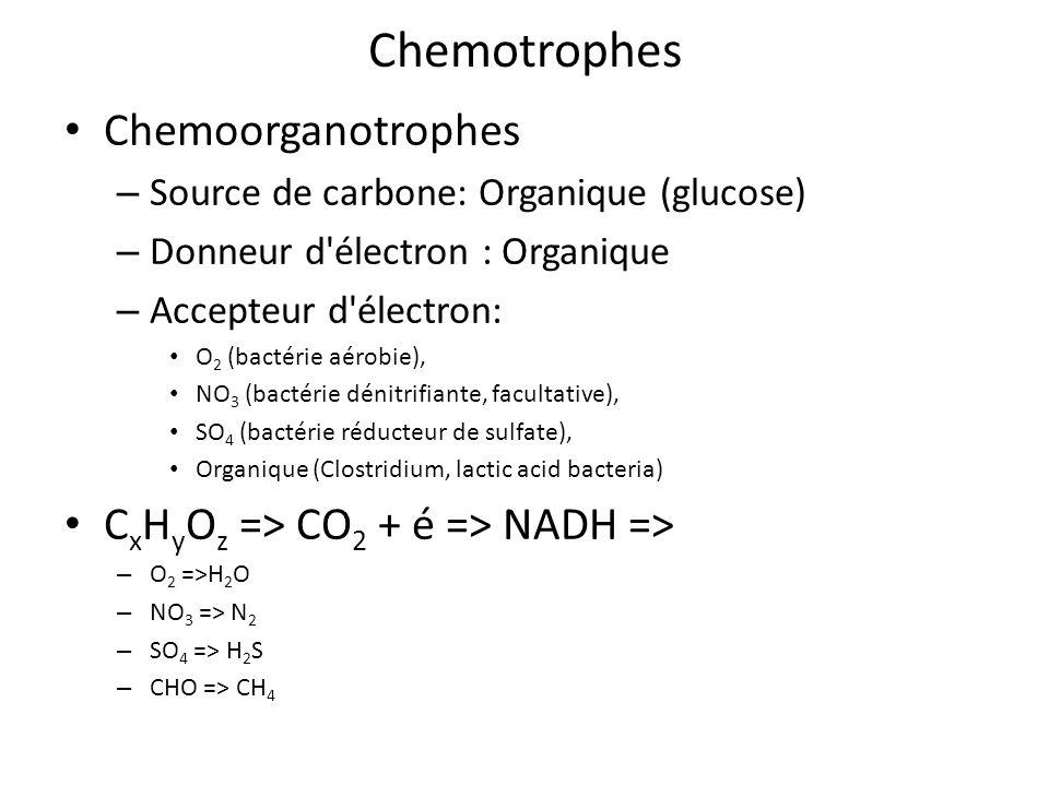 Chemotrophes Chemoorganotrophes – Source de carbone: Organique (glucose) – Donneur d'électron : Organique – Accepteur d'électron: O 2 (bactérie aérobi