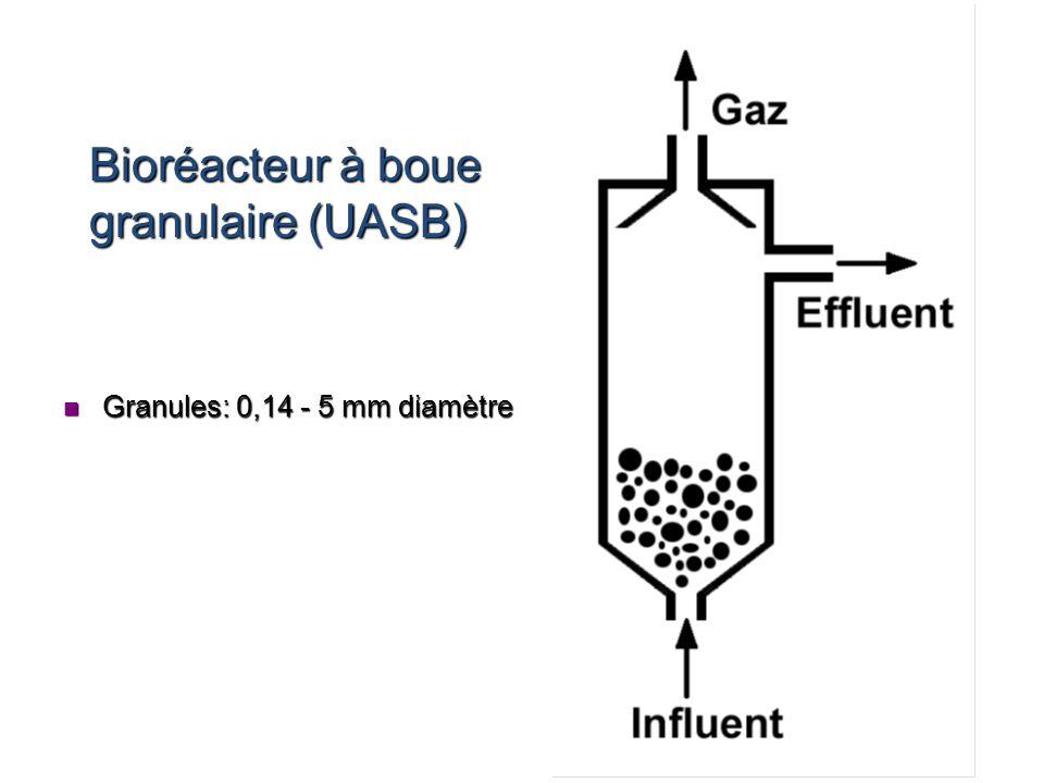 Bioréacteur à boue granulaire (UASB) n Granules: 0,14 - 5 mm diamètre
