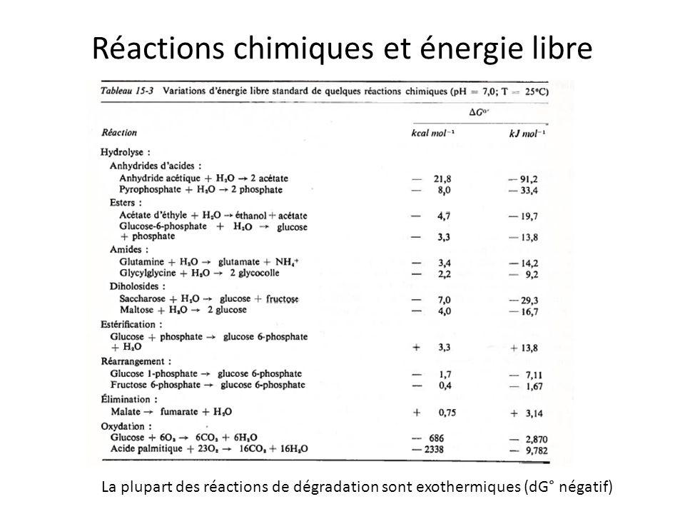 Réactions chimiques et énergie libre La plupart des réactions de dégradation sont exothermiques (dG° négatif)