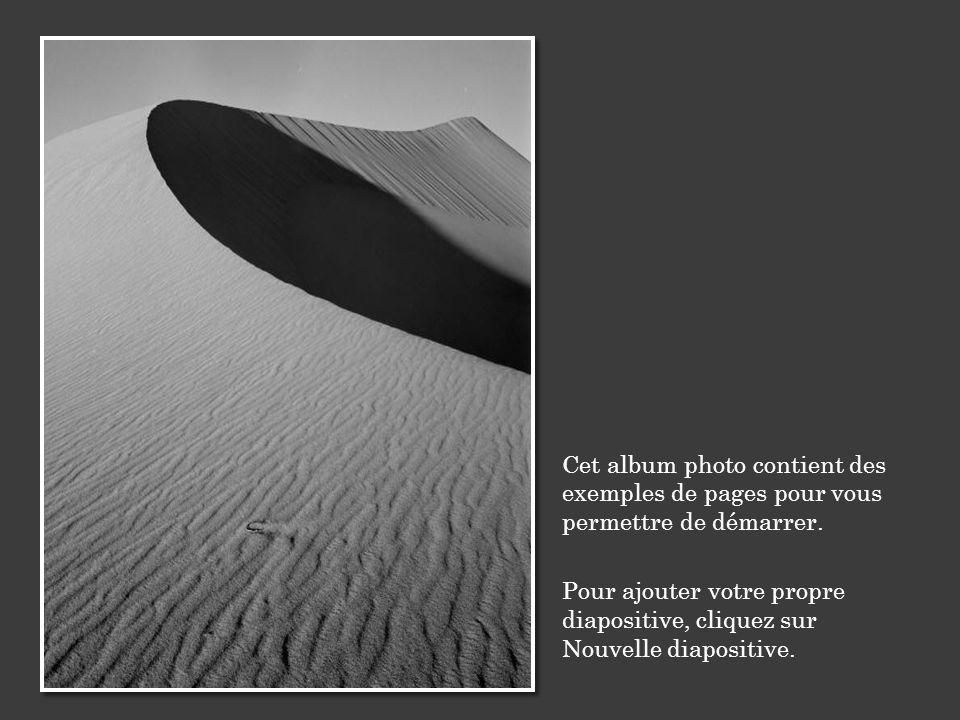 Cet album photo contient des exemples de pages pour vous permettre de démarrer.
