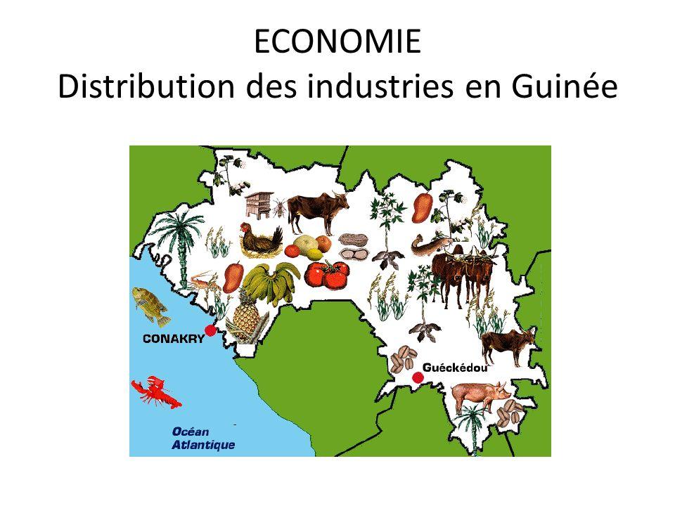 ECONOMIE Distribution des industries en Guinée