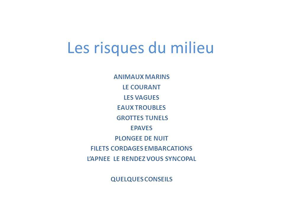 1 LES ANIMAUX MARINS LES MORSURES CONGRES MURENES POULPES…..