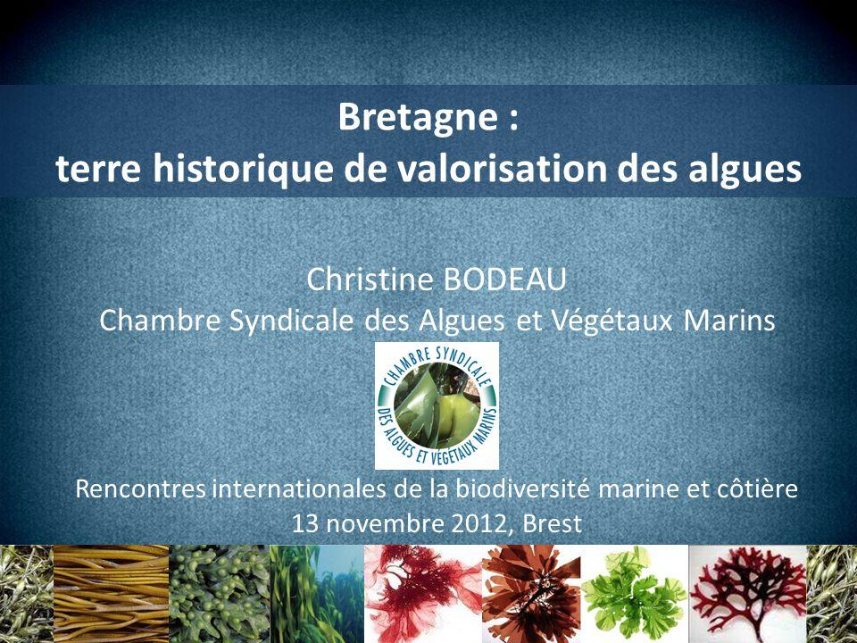 Bretagne : terre historique de valorisation des algues Christine BODEAU Chambre Syndicale des Algues et Végétaux Marins Rencontres internationales de