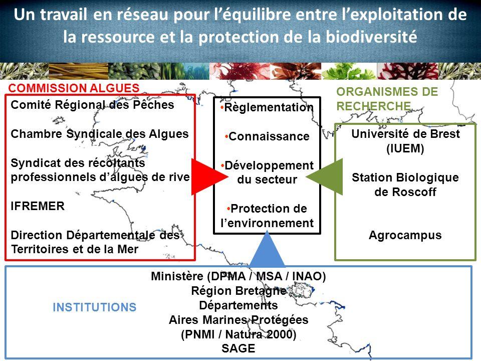 Christine BODEAU, pour la Chambre Syndicale des Algues et Végétaux Marins Un travail en réseau pour léquilibre entre lexploitation de la ressource et