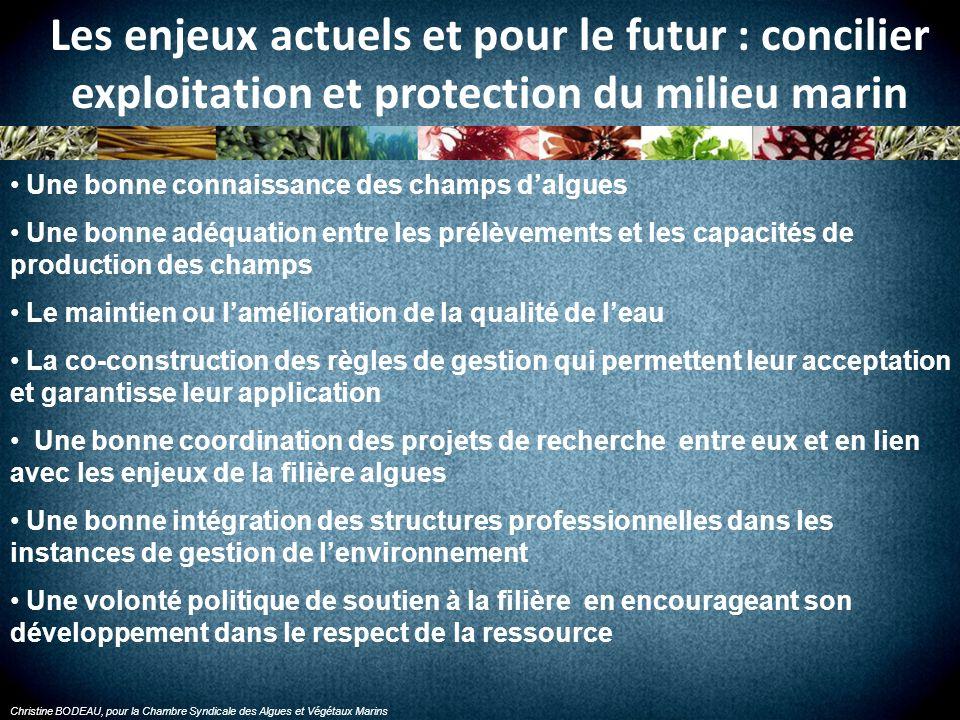 Christine BODEAU, pour la Chambre Syndicale des Algues et Végétaux Marins Les enjeux actuels et pour le futur : concilier exploitation et protection d