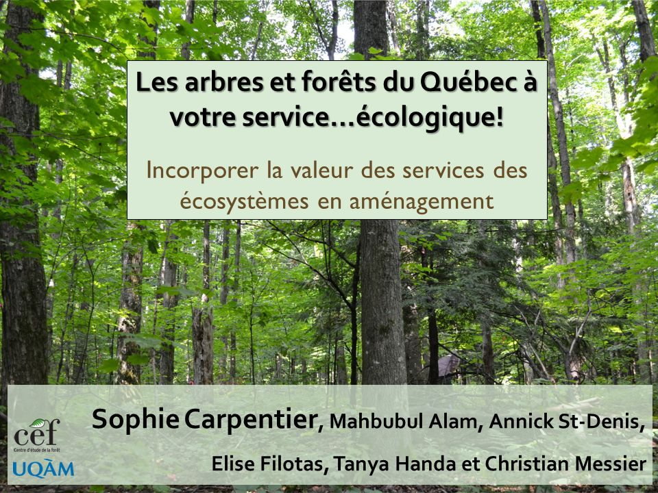 Naming the already known Growing recognition – Millenium Ecosystem Assessment – Ecosystem Services Journal – World wide initiatives (TEEB, etc.) Sophi