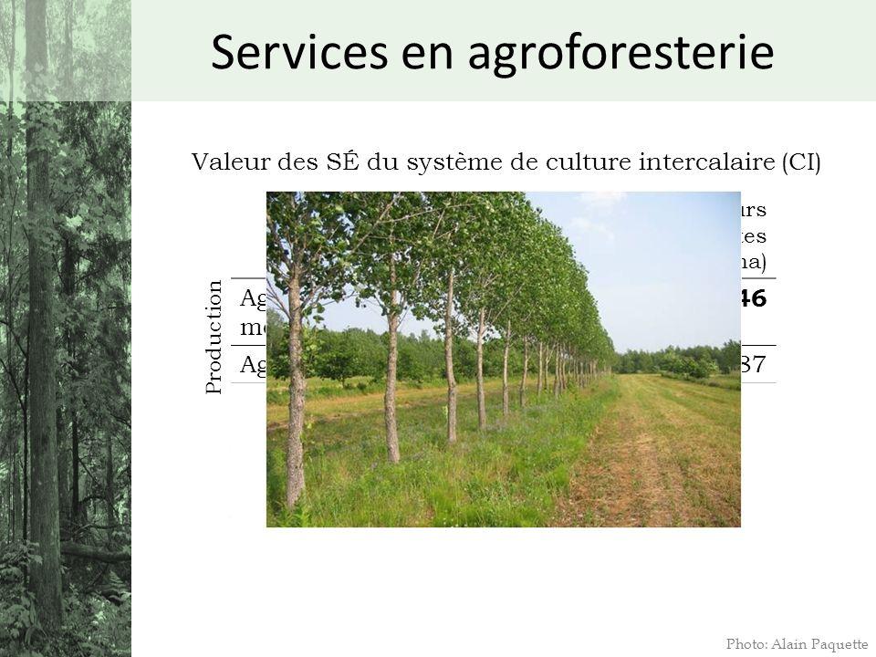 Services en agroforesterie Photo: Alain Paquette Valeur des SÉ du système de culture intercalaire (CI) Valeurs présentes nettes ($/ha) Agriculture de
