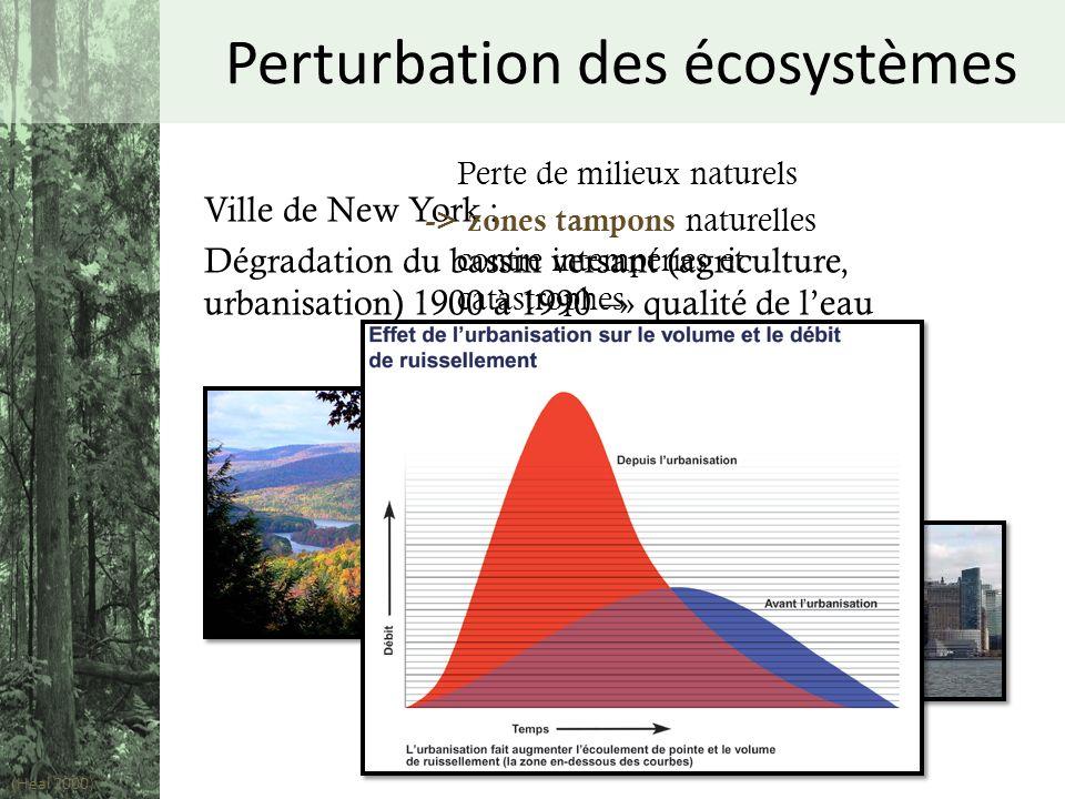 Ville de New York : Dégradation du bassin versant (agriculture, urbanisation) 1900 à 1990 –» qualité de leau (Heal 2000 ) Perturbation des écosystèmes