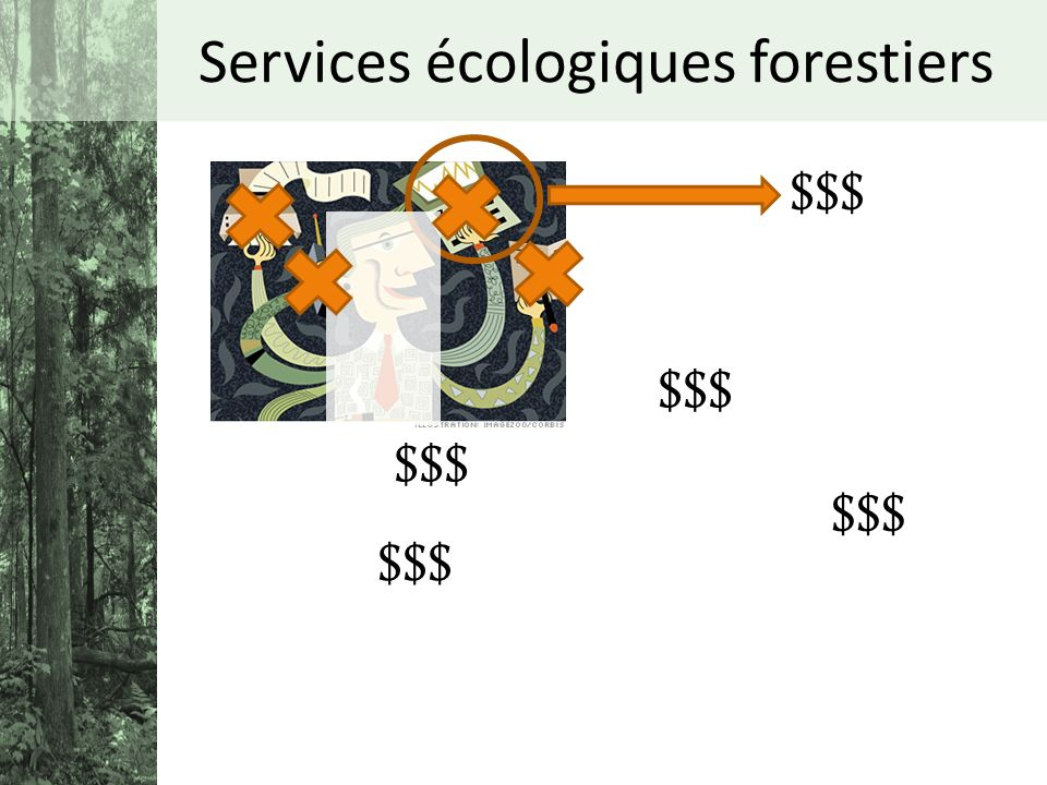 Services écologiques forestiers $$$