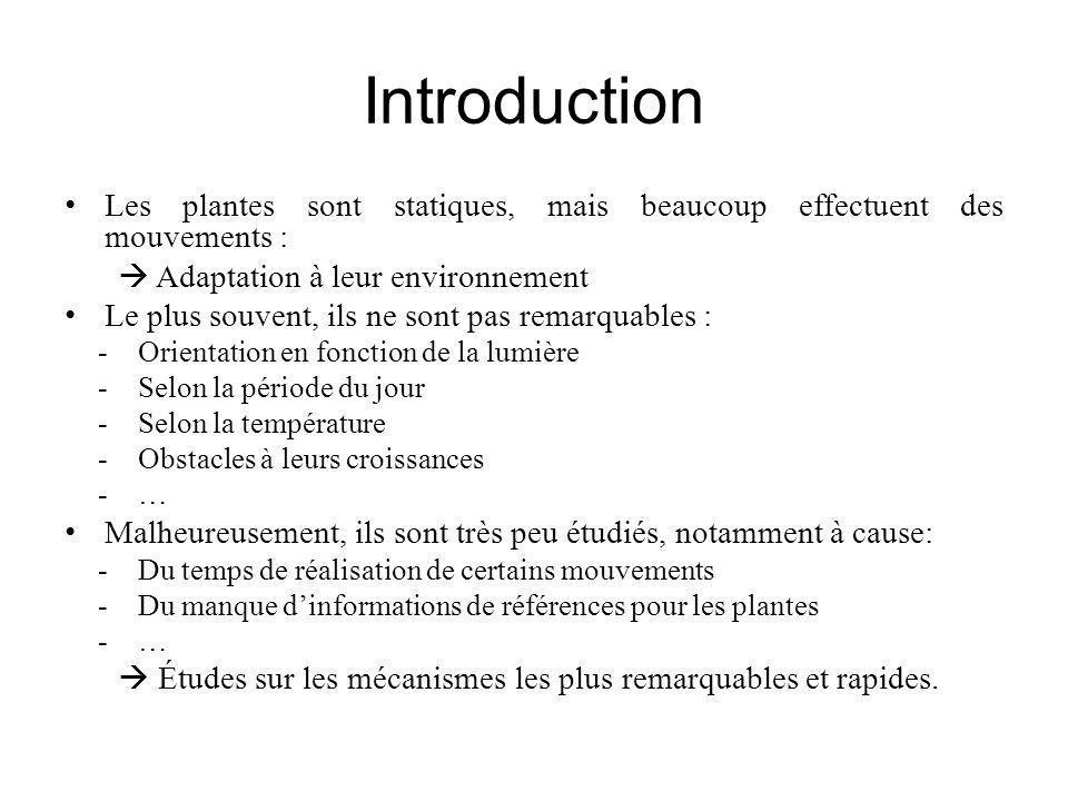 Introduction Les plantes sont statiques, mais beaucoup effectuent des mouvements : Adaptation à leur environnement Le plus souvent, ils ne sont pas re