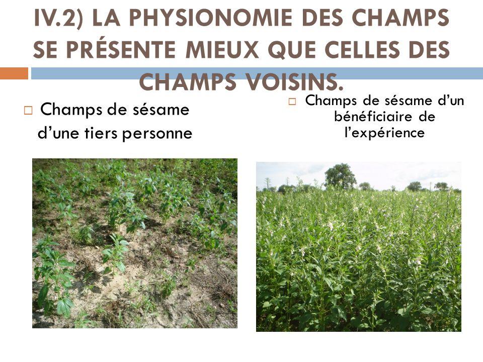 IV.2) LA PHYSIONOMIE DES CHAMPS SE PRÉSENTE MIEUX QUE CELLES DES CHAMPS VOISINS. Champs de sésame dune tiers personne Champs de sésame dun bénéficiair