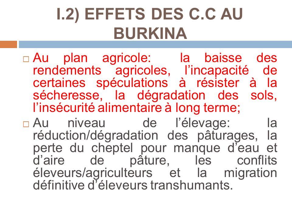 I.2) EFFETS DES C.C AU BURKINA Au plan agricole: la baisse des rendements agricoles, lincapacité de certaines spéculations à résister à la sécheresse,