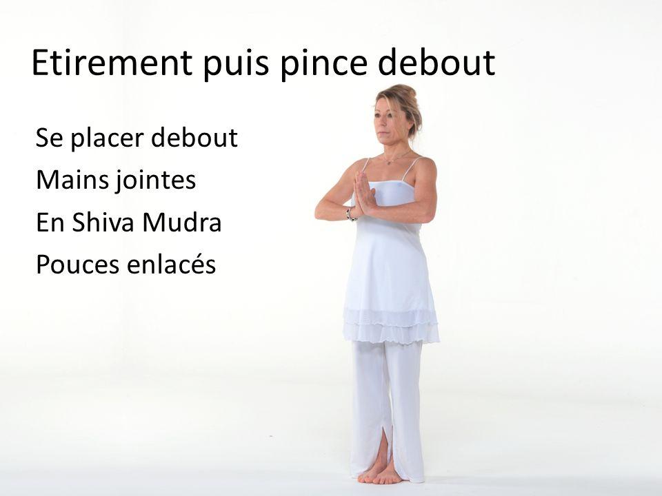 Etirement puis pince debout Se placer debout Mains jointes En Shiva Mudra Pouces enlacés