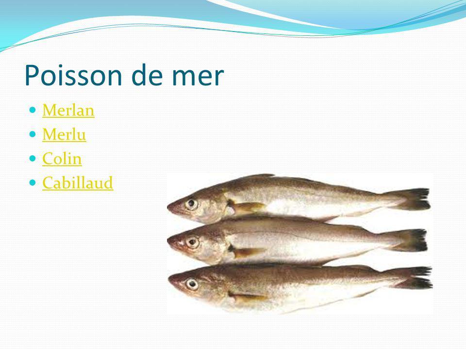 Poisson de mer Merlan Merlu Colin Cabillaud