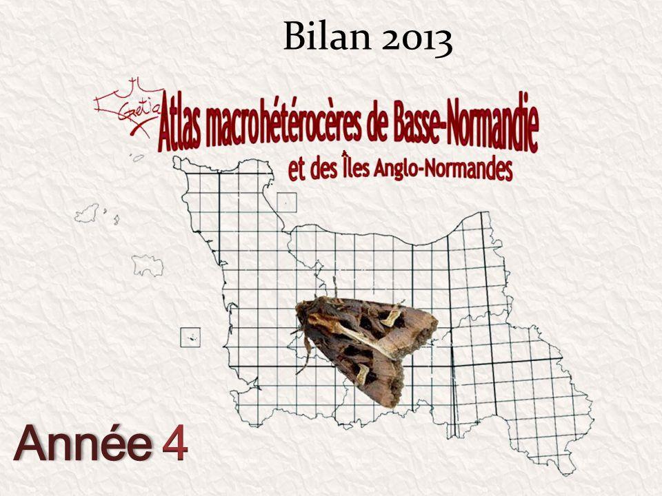 06 septembre Frênes 61 le Mont Crespin Demande dun entomologiste local Amphypira tragopoginis