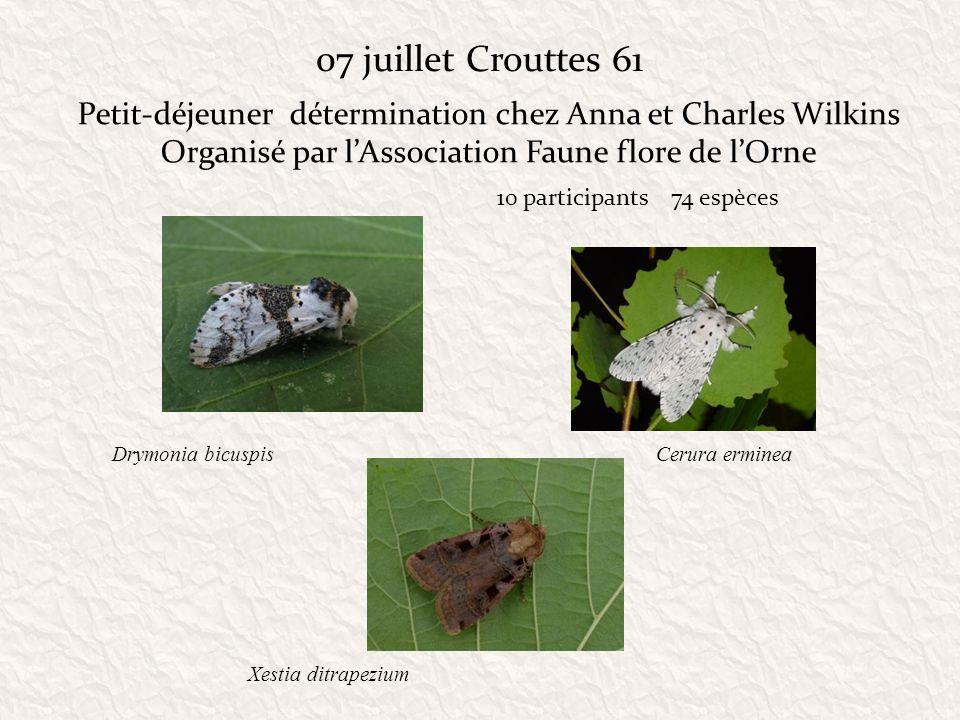 07 juillet Crouttes 61 Petit-déjeuner détermination chez Anna et Charles Wilkins Organisé par lAssociation Faune flore de lOrne 10 participants 74 esp