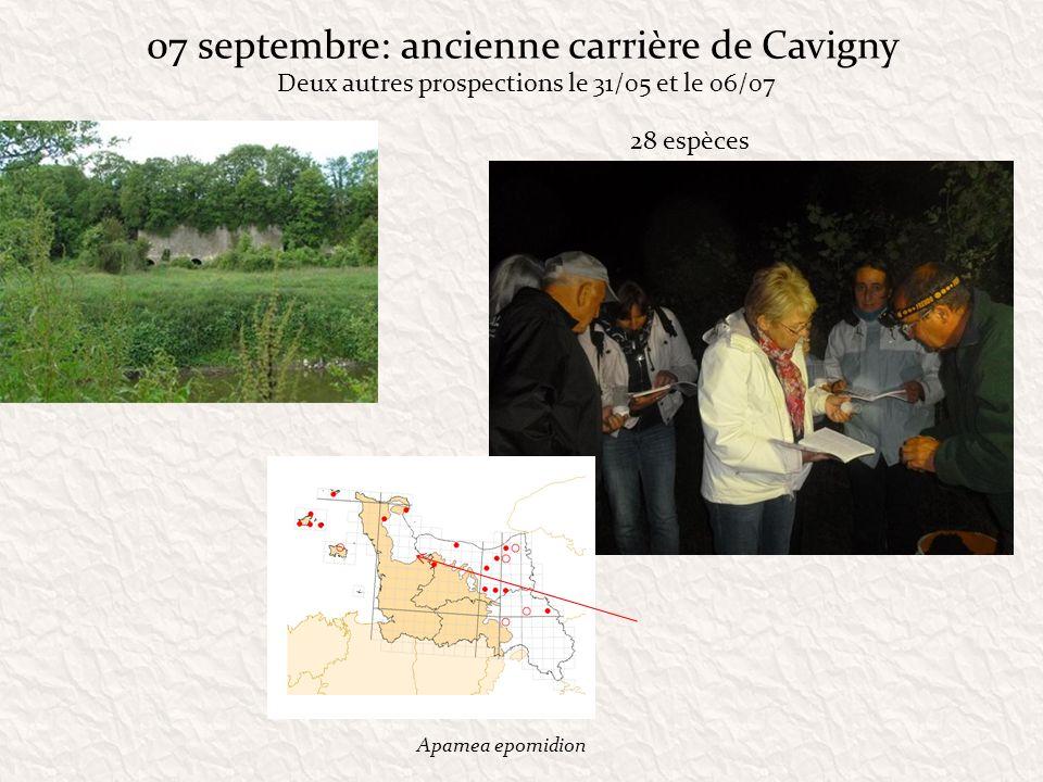 07 septembre: ancienne carrière de Cavigny 28 espèces Apamea epomidion Deux autres prospections le 31/05 et le 06/07