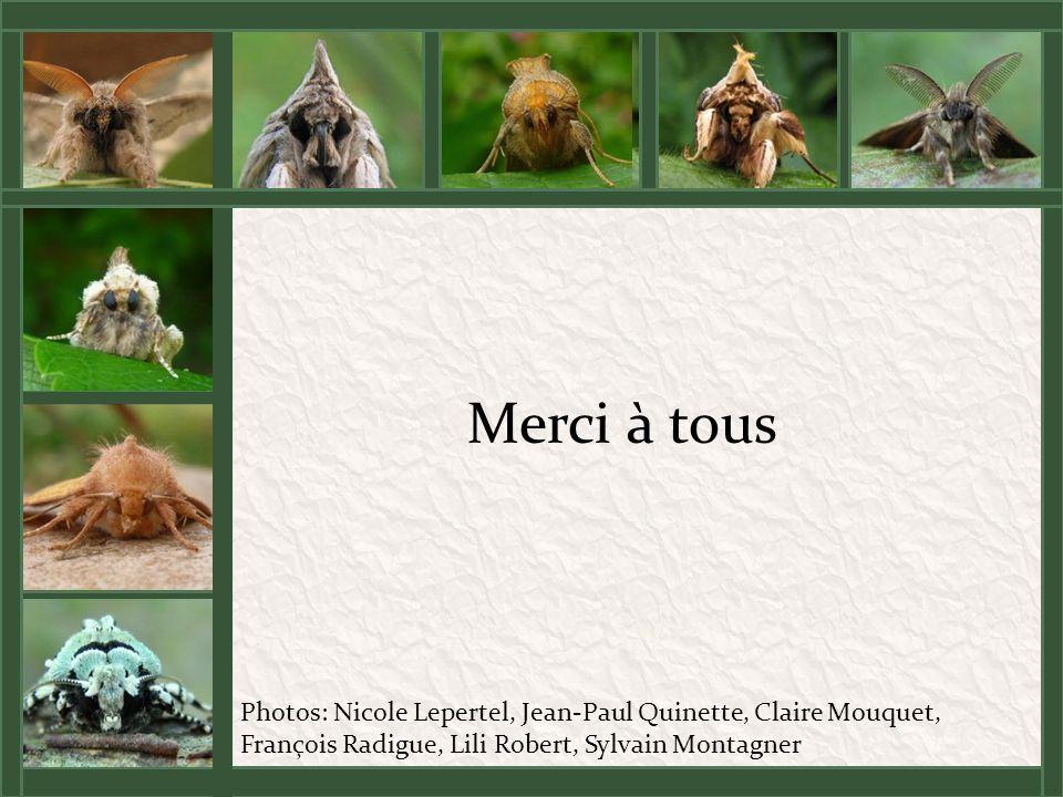 Merci à tous Photos: Nicole Lepertel, Jean-Paul Quinette, Claire Mouquet, François Radigue, Lili Robert, Sylvain Montagner