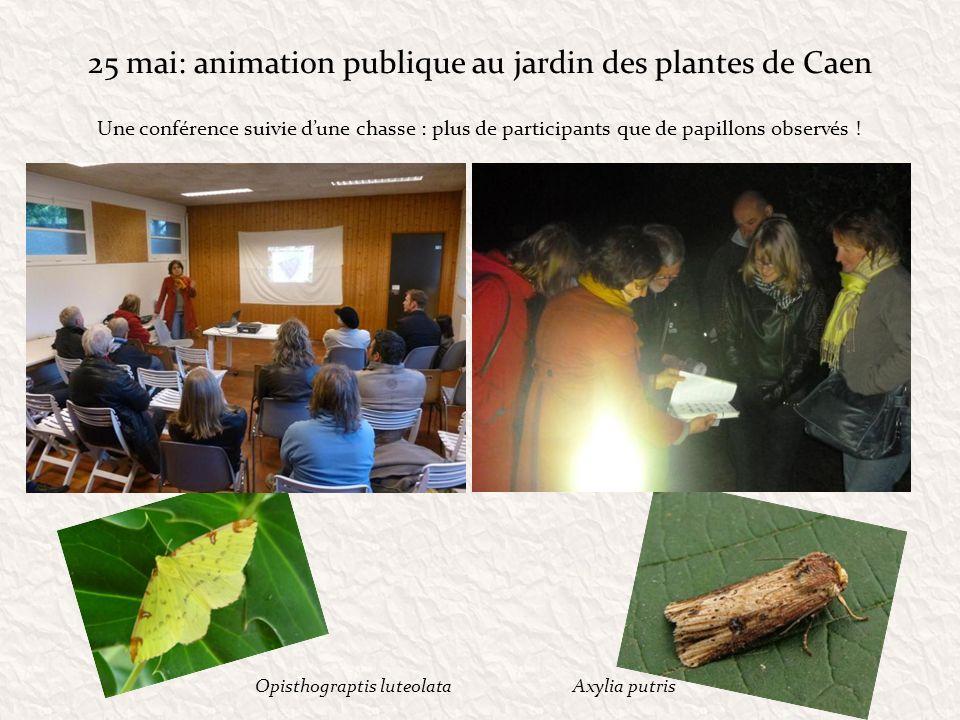 25 mai: animation publique au jardin des plantes de Caen Une conférence suivie dune chasse : plus de participants que de papillons observés ! Axylia p