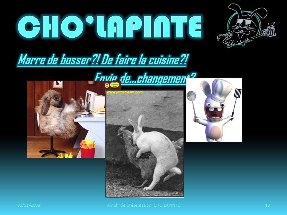05/11/2008Amphi de présentation CHOLAPINTE13