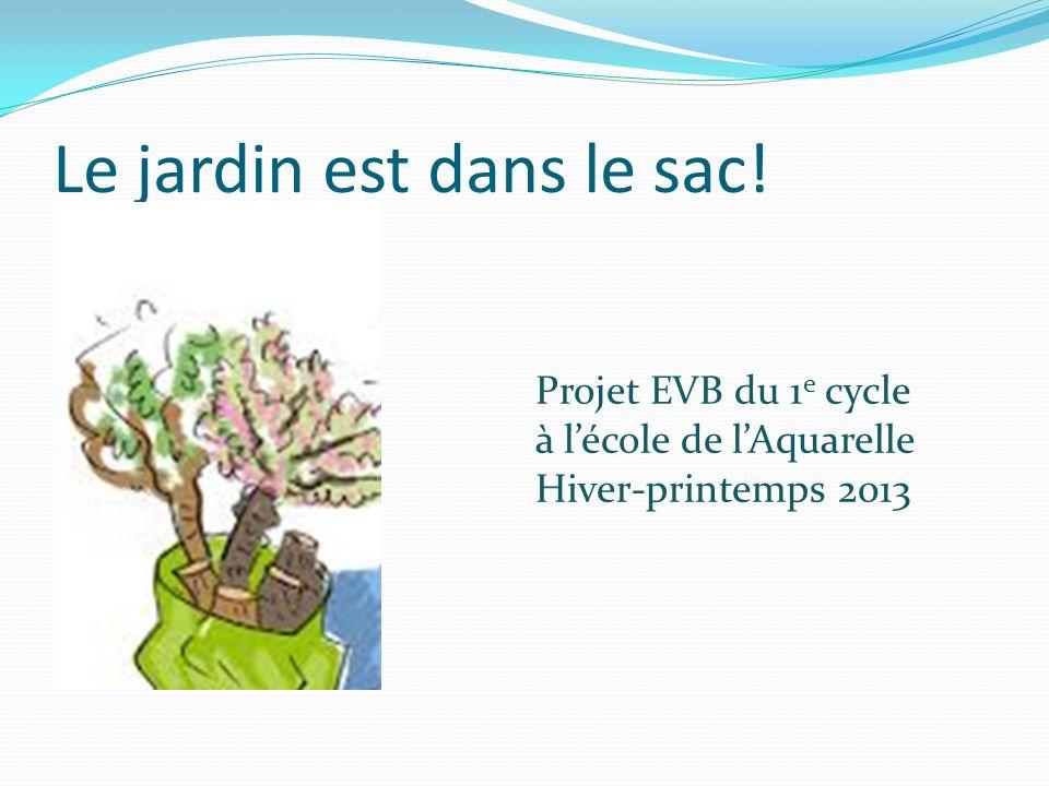 Le jardin est dans le sac! Projet EVB du 1 e cycle à lécole de lAquarelle Hiver-printemps 2013
