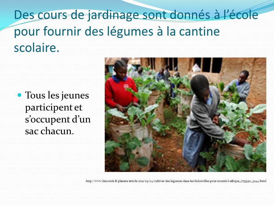 Des cours de jardinage sont donnés à lécole pour fournir des légumes à la cantine scolaire.