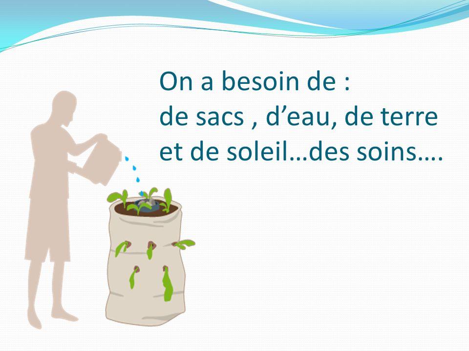 On a besoin de : de sacs, deau, de terre et de soleil…des soins….