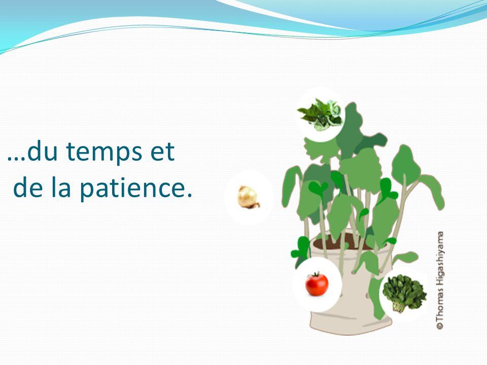 …du temps et de la patience.