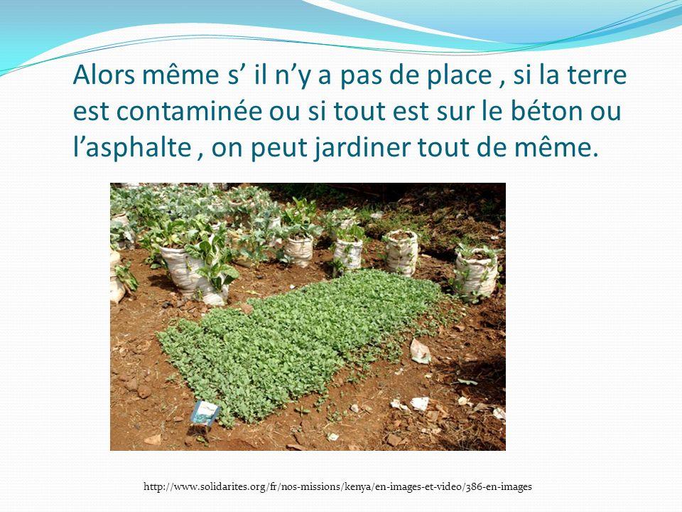 Alors même s il ny a pas de place, si la terre est contaminée ou si tout est sur le béton ou lasphalte, on peut jardiner tout de même.