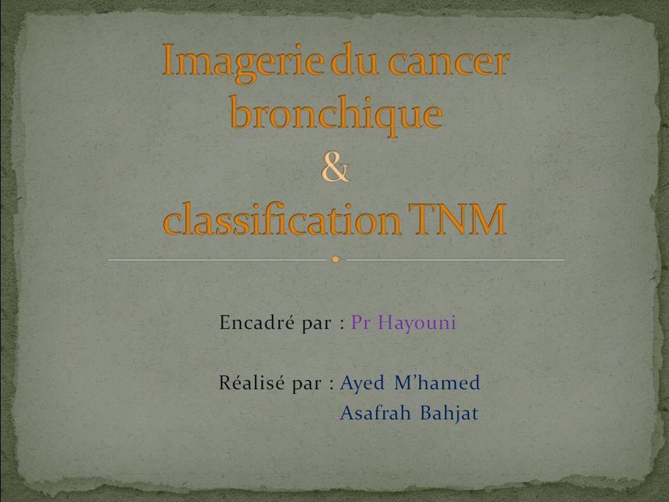 Encadré par : Pr Hayouni Réalisé par : Ayed Mhamed Asafrah Bahjat