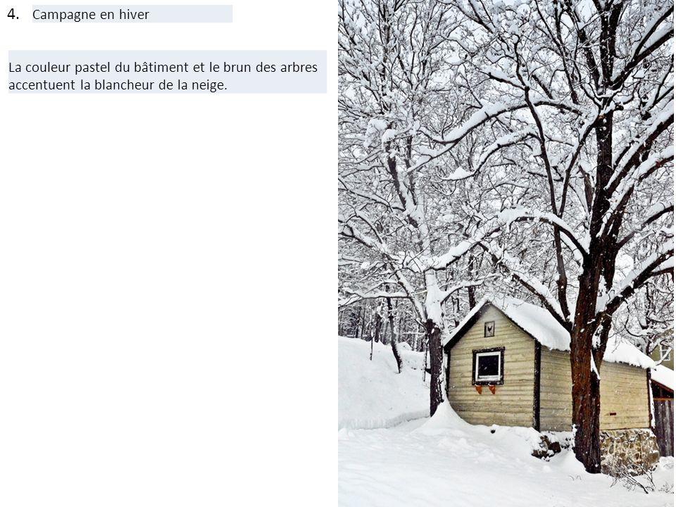 4. Campagne en hiver La couleur pastel du bâtiment et le brun des arbres accentuent la blancheur de la neige.