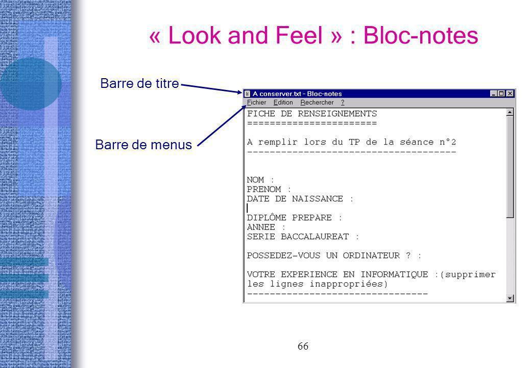 66 « Look and Feel » : Bloc-notes Barre de titre Barre de menus