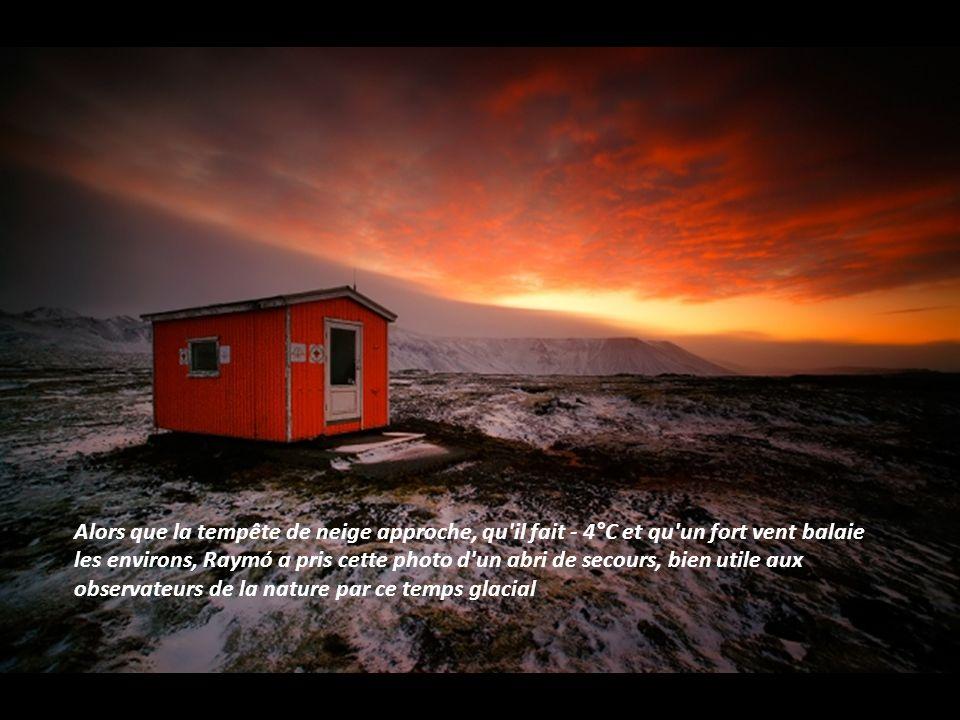 Cette plage se trouve au bord du lac de Jökulsárlón en Islande. Il s'agit de l'un des plus grands lacs glaciaires du pays. Les gros blocs de glace se