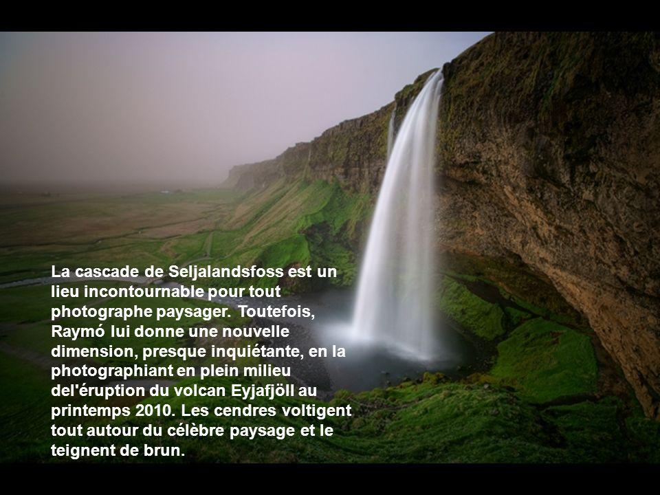 Les hautes terres d'Islande se situent dans les régions centrales du pays. La lumière hors du commun dans le pays sublime le drapé herbeux des montagn