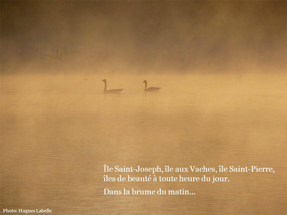 Photo: Hugues Labelle Île Saint-Joseph, île aux Vaches, île Saint-Pierre, îles de beauté à toute heure du jour. Dans la brume du matin...