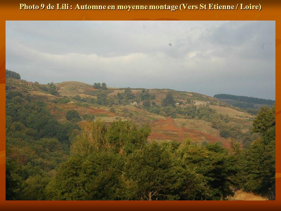 Photo 9 de Lili : Automne en moyenne montage (Vers St Etienne / Loire)