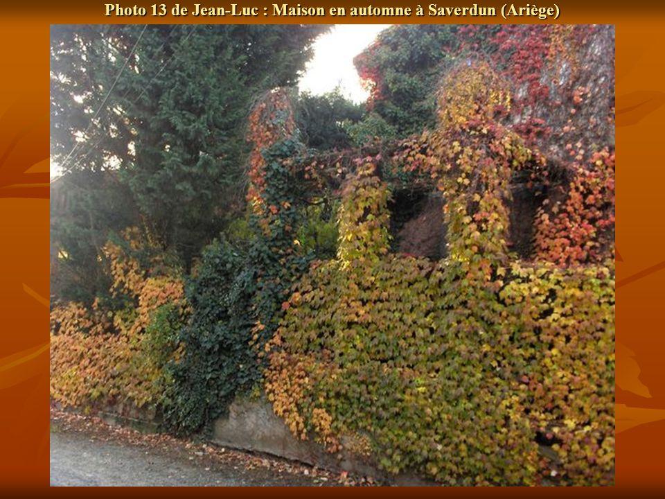 Photo 13 de Jean-Luc : Maison en automne à Saverdun (Ariège)