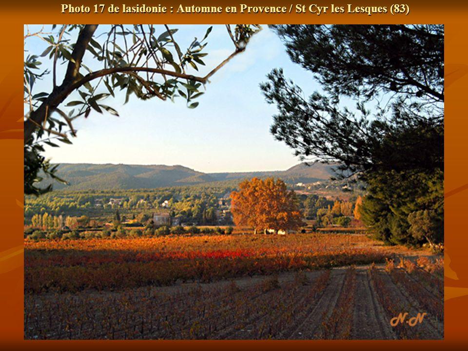 Photo 17 de lasidonie : Automne en Provence / St Cyr les Lesques (83)